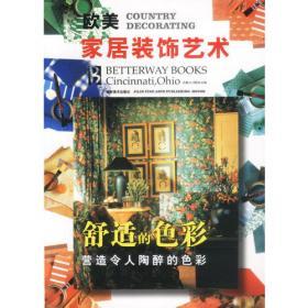 欧美家居装饰艺术--现代的风格