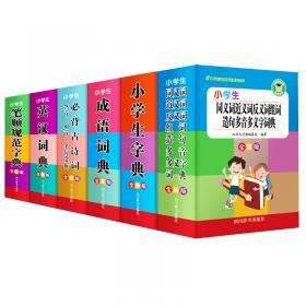 小学生成语词典(双色版)