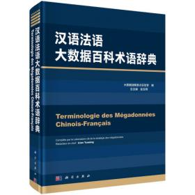 汉语德语大数据百科术语辞典