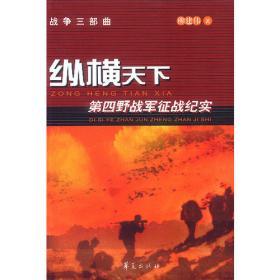 迷失与崛起——新视角下的中国企业