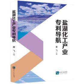 盐湖资源环境与全球变化:第六届国际盐湖学术讨论会论文选集