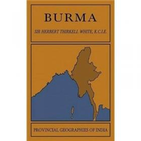 Burma in Revolt:Opium and Insurgency since 1948