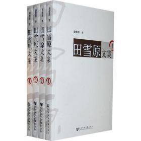 大国之难:当代中国的人口问题