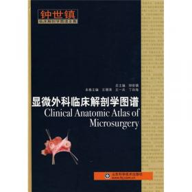 普通外科临床解剖学(第2版)(精)/钟世镇现代临床解剖学全集