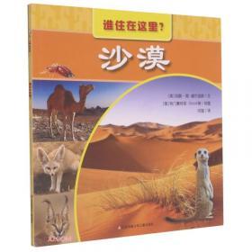 沙漠革命记