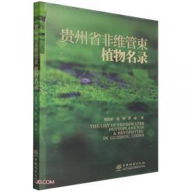 贵州:教育发展的轨迹