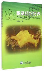 ProtelDXP2004电路设计与仿真教程(第4版)