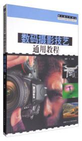 摄影用光与构图/高等院校摄影摄像精品教材