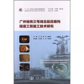 影视新声(南京师范大学戏剧与影视学研究生论文集2020)