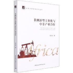 非洲黄皮书:非洲发展报告No.23(2020~2021)