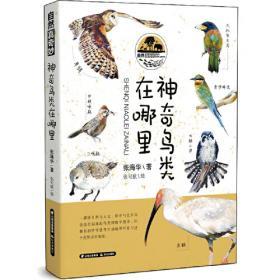 自然语言处理研究前沿