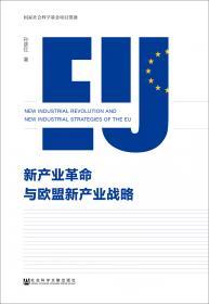意大利蓝皮书:意大利发展报告(2020-2021)