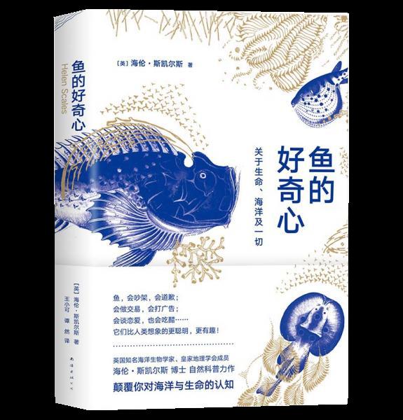 鱼的好奇心:关于生命、海洋及一切